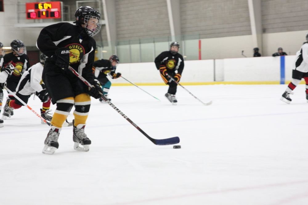 Hockey - University of Guelph Fitness and Recreation